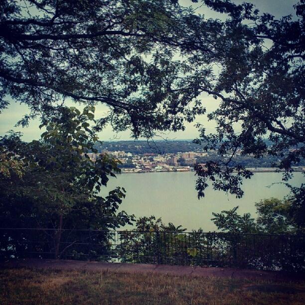 Some New Jersey #nature. @dianadark- #webstagram