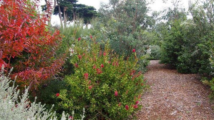 Paths run through all of the gardens