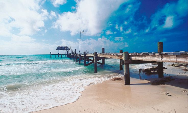 Die Inselkette der Bahams erstreckt sich auf rund 700 Inseln, unbewohnten Eilanden und großen Felsen über eine Fläche von 3.885 Quadratkilometer bzw. knapp 14.000 Quadratkilometern Landfläche. Abgesehen von der ähnlichen Topographie ist der Charakter jeder einzelnen Insel einzigartig.Beste Reisezeit: Grundsätzlich kann man die Bahamas das ganze Jahr über bereisen. Am besten eignen sich jedoch die Monate Dezember bis Mai. #bahamas #travel #island #beach