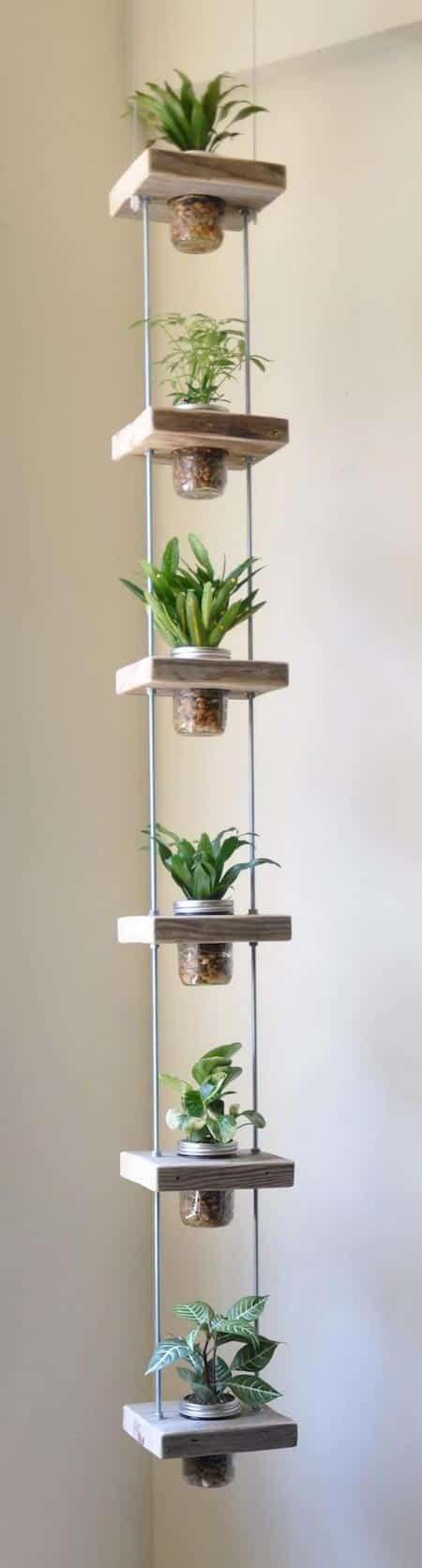 jardin bocal vertical