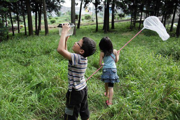 子供 虫取り - Google 検索