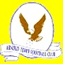Arnold Town F.C.