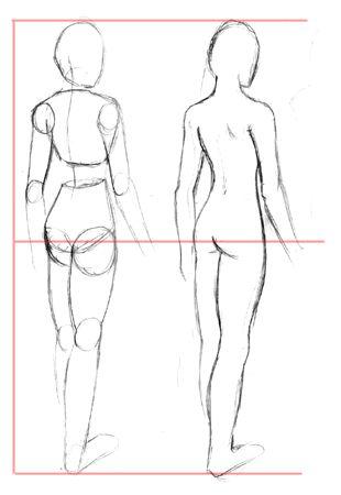 Tutorial]Cómo dibujar la Figuras femenina - Taringa!                                                                                                                                                     Más