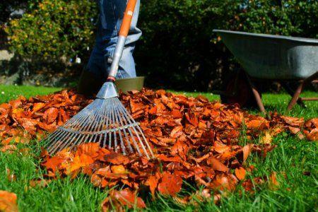 Weekend Warrior: Checklist- Getting Your #Yard Ready For #Winter | HomeSource Blog