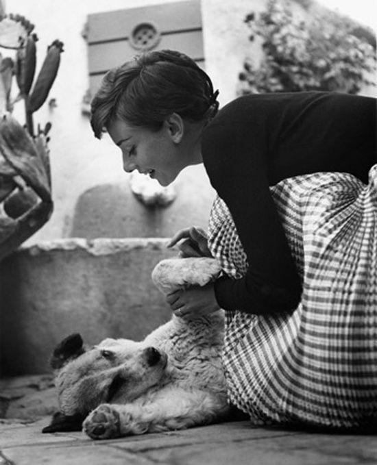 Audrey Hepburn and her dog.