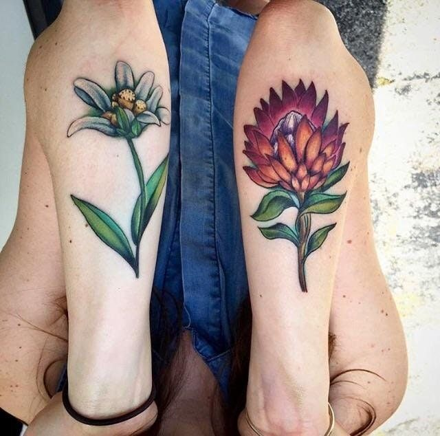 Reddit - tattoos - My edelweiss and king protea flowers done by Chris Hedlund at Art Realm Tattoo, Austin, TX.