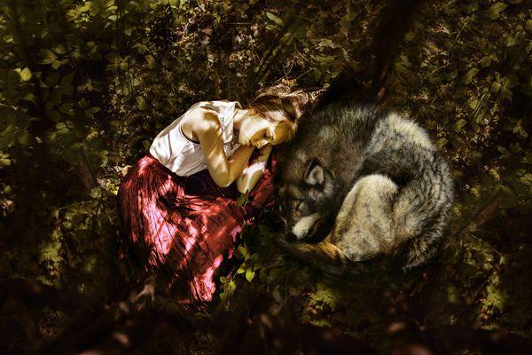 Photography by Laura Zalenga