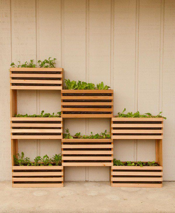 See How You Can Grow Amazing Vegetables In Raised Garden Beds