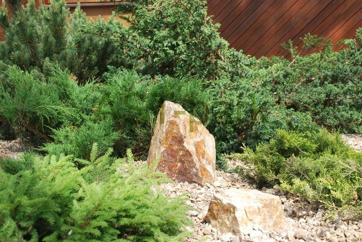 Композиция из хвойных кустарников с крупными глыбами и декоративной отсыпкой