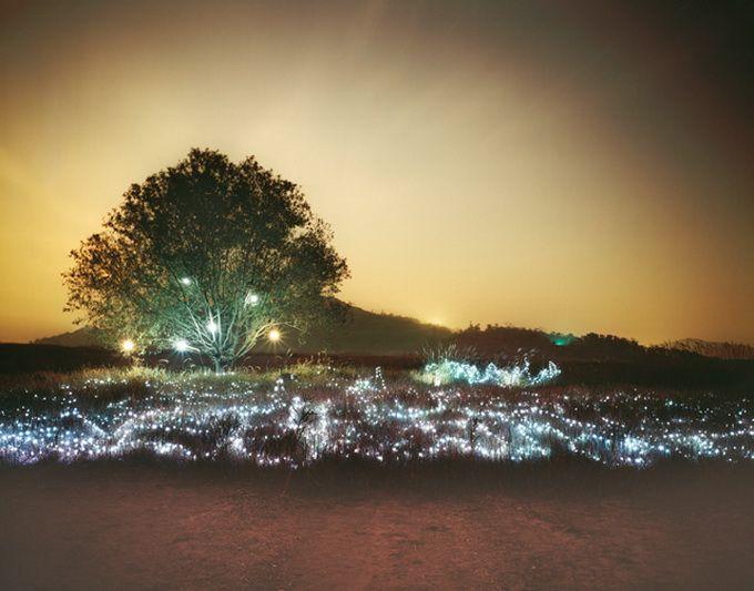 Installation of Stars Nights. by Lee Eunyeol...looks unbelievable!!