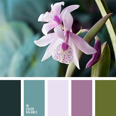 color lila, color orquídea violeta, color turquesa, color verde hierba, colores de diseño, colores de las orquídeas violetas, colores lila y lila pálido, lila pálido, lila pálido y turquesa, lila y turquesa, lila y verde, paletas de diseño, turquesa, turquesa oscuro, turquesa y lila, verde amarillento,