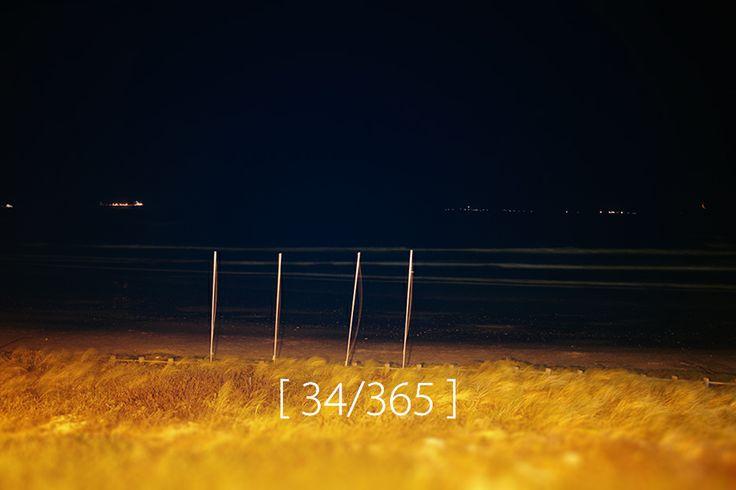 Sunday, 02 Feb 2014 [ Eden on the Bay ]