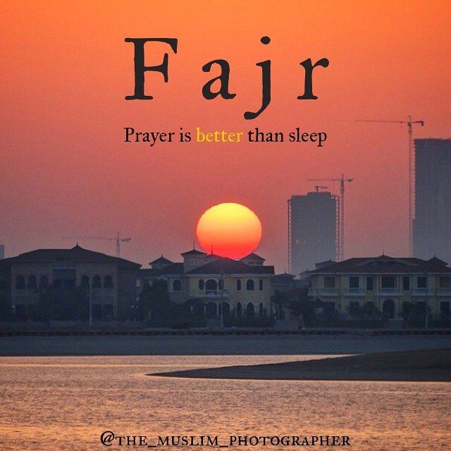 . . . May Allah make us all of the people of Jannah and forgive our sins. ▃▃▃▃▃▃▃▃▃▃▃▃▃▃▃▃▃▃▃▃ Photo taken by me in Dubai UAE /Your Brother in Islam Fadi @the_muslim_photographer