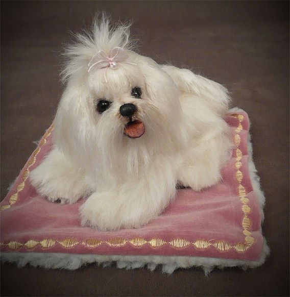 Mill Creek Creations Traditional Dogs Maltese Maltese Puppy