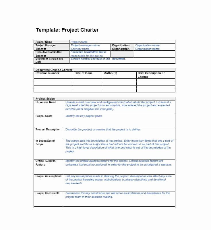 Project Charter Template Example Luxury 40 Project Charter