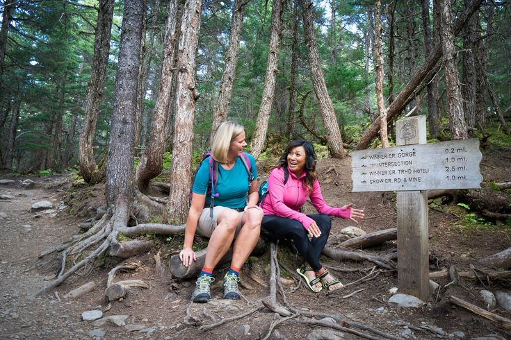 Some of the Best Alaska Hiking Trails You Can't Miss | Alaska Garden Gate B&B and Cottages | Palmer, AK