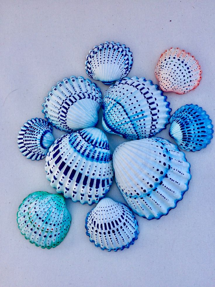 Lovely shells a friend colored for me!