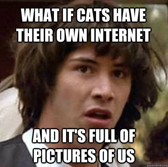Conspiracy Keanu is my favorite meme