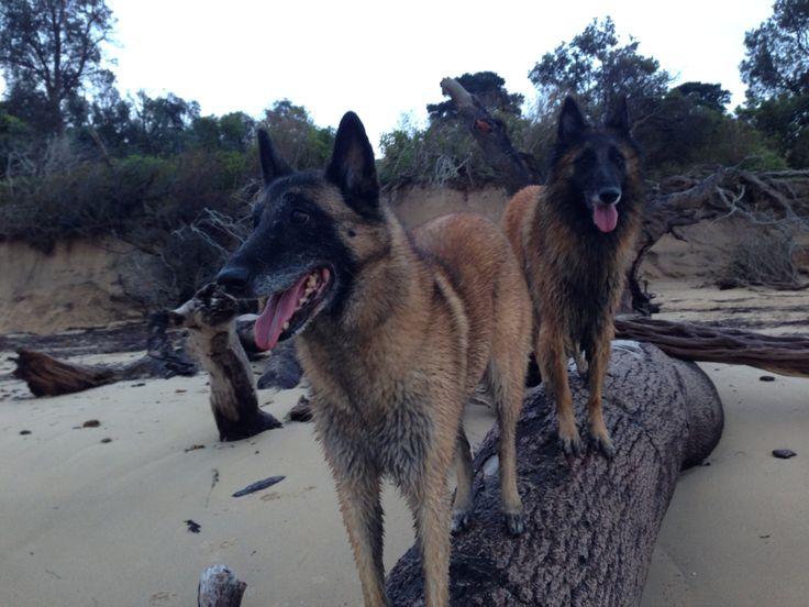 Somers beach- Arinya and Ella