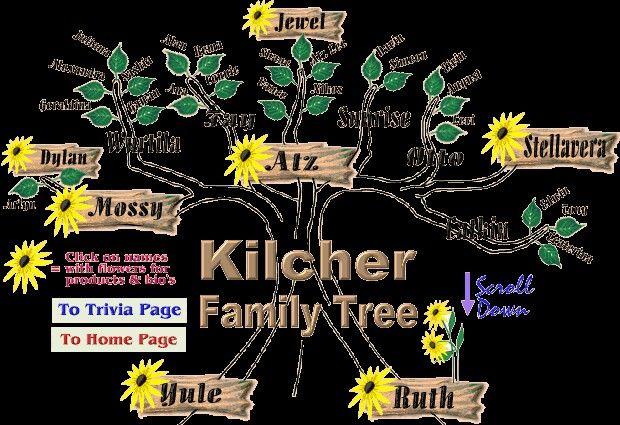 Secret board robin s board families kilcher family tree kilcher family