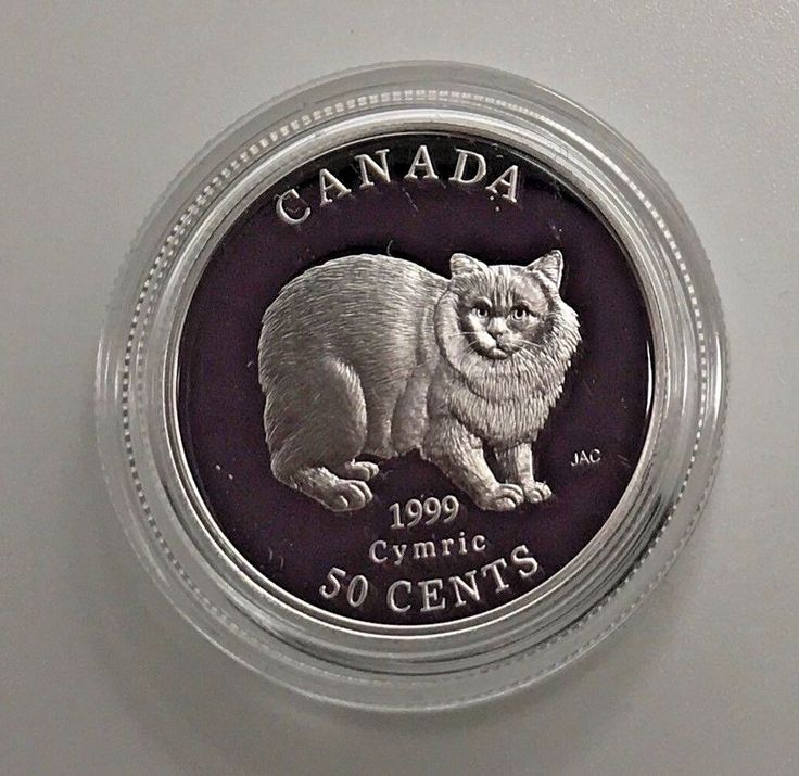 Canada 1999 Cymric  50 Cents Cats Of Canada  Sterling Silver Capsule