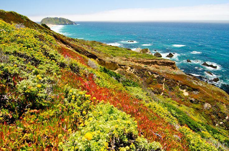 A romantic road trip through Big Sur   Best places to camp ...