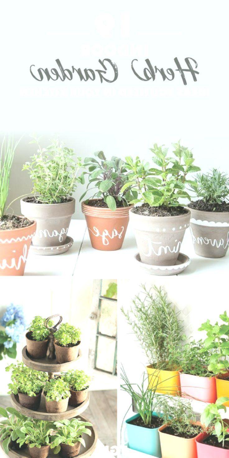 Indoor Herb Garden DIY | Herb Garden Ideas | Indoor garden ...