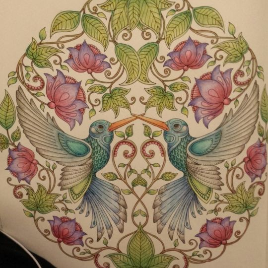 17 Best images about Coloring Books For Adults & Johanna Basford ...