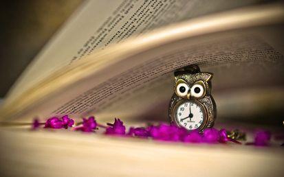 книга, сиреневые, страницы, цветы, часы, сова, кулон