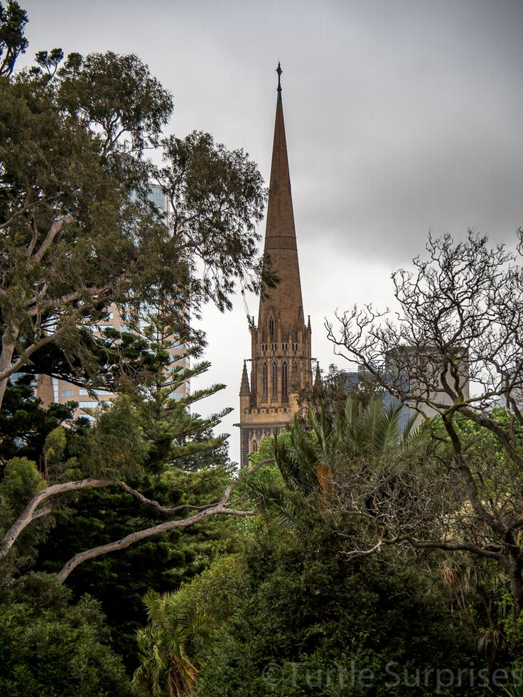 I was so very fortunate to have a couple of hours available to me on one of my rare trips into Melbourne. I could not resist wandering around this inspiring cathedral and the beautiful Fitzroy Gard...