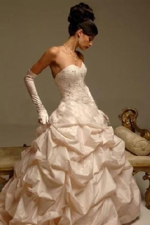 Ivory ball gown wedding dresses wedding in arizona for Wedding dress with long gloves