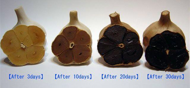 How to make black garlic - an awesome fermenting project with tasty results.