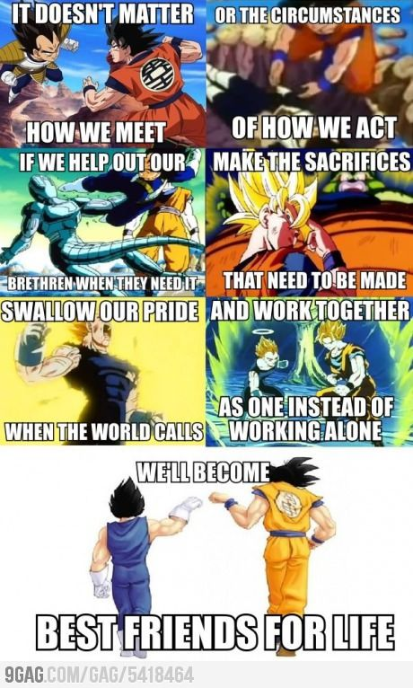 Love this SO much!! Goku and Vegeta truly work best together, and will always be the best of friends!