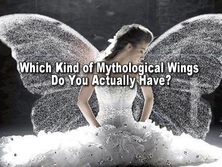 Wings provide shelter, strength, and freedom to those that possess them. Throughout human history has animals, creatures, beings, and gods have been admired and worshiped for theirs. Find out which you actually have by taking this insightful quiz.