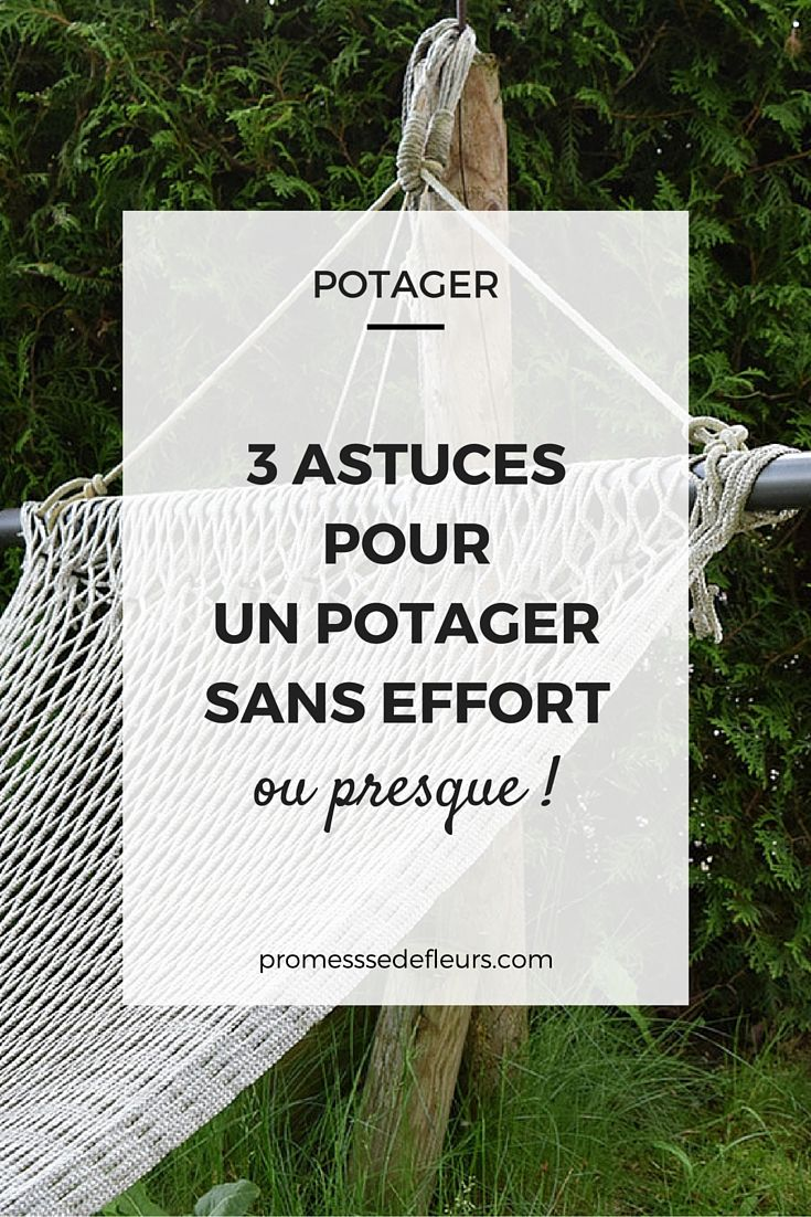 three astuces pour un potager sans effort, ou presque…