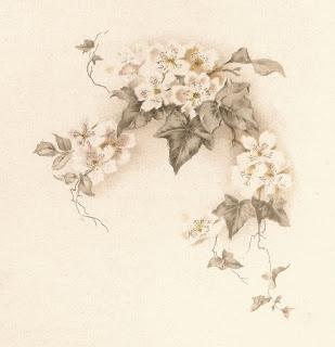 Vintage White Flowers and Ivy Vines Illustration from Old Poetry Book