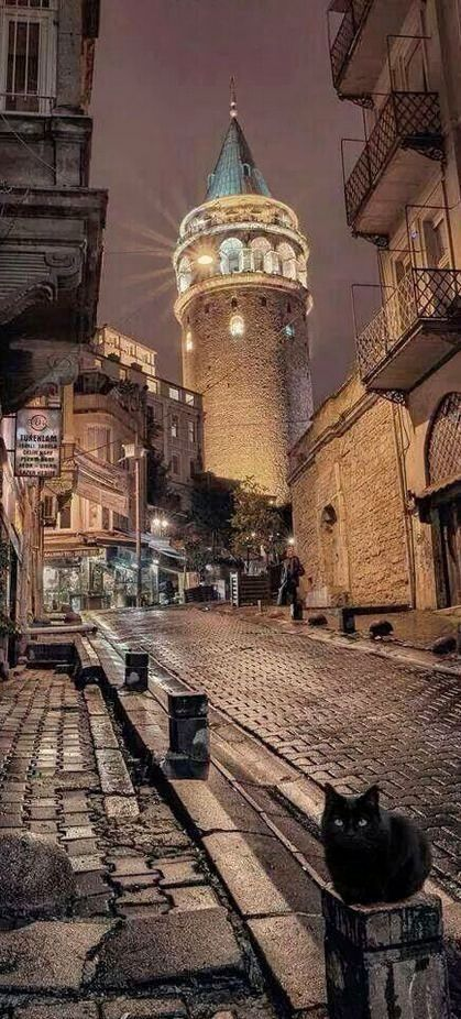 Galata tower, Istanbul, Turkey by Hercio Dias. And…