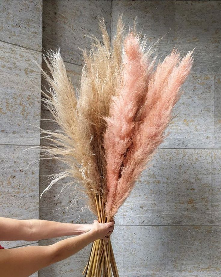 Pampas Accents In 2020 Pampas Grass Decor Grass Decor Pampas Grass