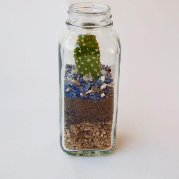 Terrario | Mensaje en la botella