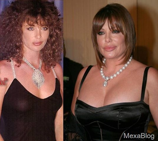 Kelly LeBrock Then and Now | Actresses who looked good in their heyday (including deceased) - Page ...