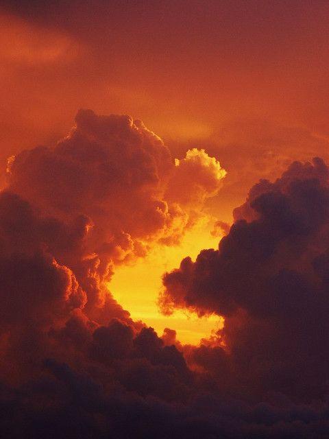 Ze zweeg en tuurde naar de horizon. Ik keek met haar mee hoe de hemel verkleurde van nachtelijk zwart naar bordeauxpaars, fel fuchsia en oranje met gele en roze wolkenstrepen.  Hoe meer daglicht er was, hoe menselijker ze leek – minder gloeilampachtig.  We keken samen toe hoe de stad ontwaakte en benedenbewoners hun dagelijkse routine aanvatten.