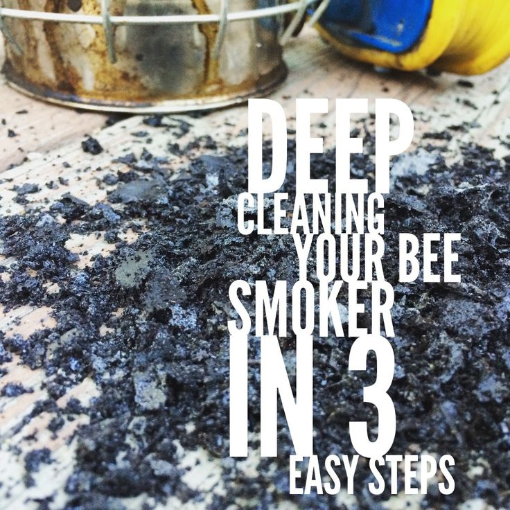 DEEP CLEANING YOUR BEE SMOKER IN 3 EASY STEPS :http://beekeepinglikeagirl.com/deep-cleaning-your-bee-smoker-in-3-easy-steps/