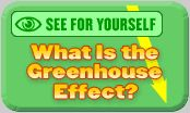 What is the Green House Effect? And other climate change activities/information.