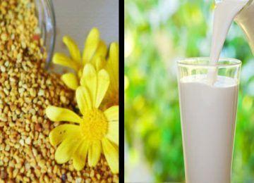 Prostat İçin Doğal Çare Arı Poleni ve Süt