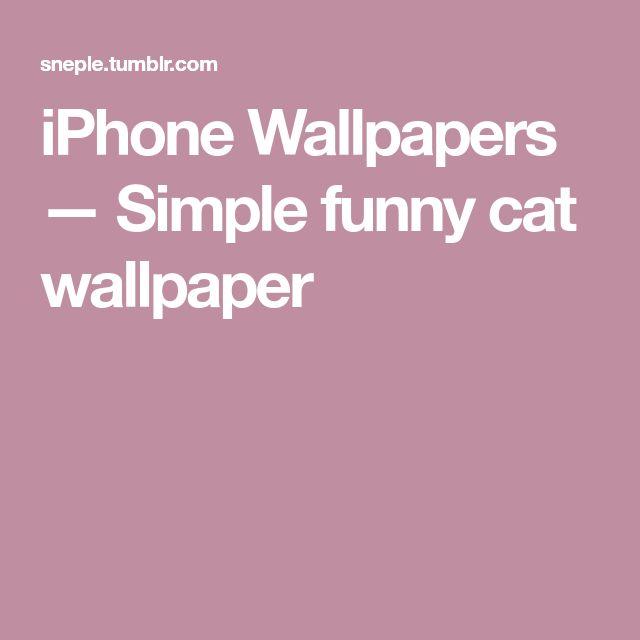 iPhone Wallpapers — Simple funny cat wallpaper