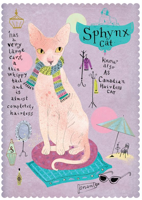 Sphynx cat from Postallove