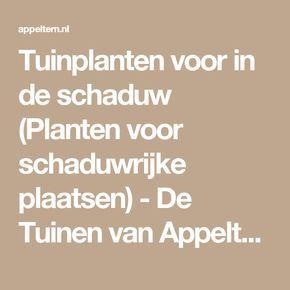 Tuinplanten voor in de schaduw (Planten voor schaduwrijke plaatsen) - De Tuinen van Appeltern