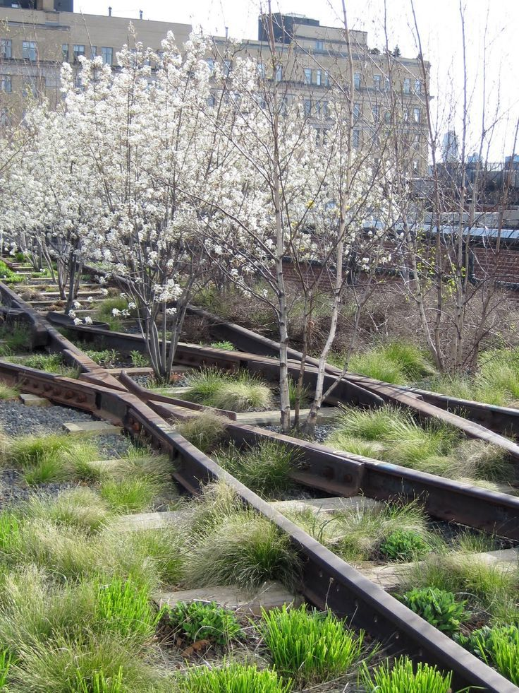 The highline - beautiful inspiration from a garden in NYC , with planting designed by Piet Oudolf.   Earthy Contemporary Garden Design   Garden Style
