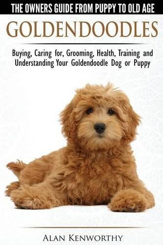 Goldendoodles - The Owners Guide from Puppy to Old Age - Choosing, Caring for, Grooming, Health, Training and Understanding Your Goldendoodle Dog: Alan Kenworthy: 9781910677001: Amazon.com: Books