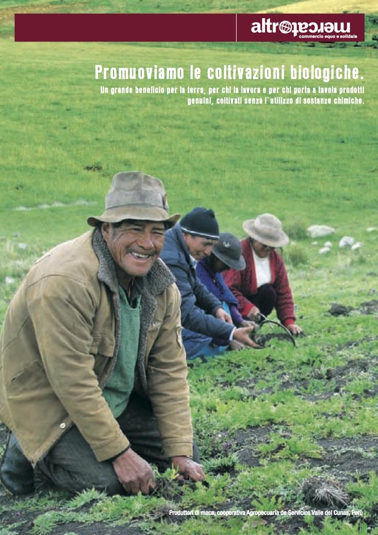 ---Maggio 2013--- Promuoviamo le coltivazioni biologiche. Un grande beneficio per la terra, per chi la lavora e per chi porta a tavola prodotti  genuini, coltivati senza l'utilizzo di sostanze chimiche.